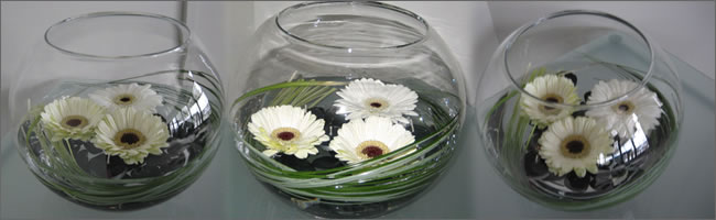 white_gerbera_table_