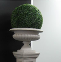 Green topiary balls for hire, Auckland Centrepieces