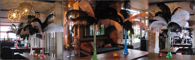 Ostrich feather centrepiece for rent, Auckland  CBD