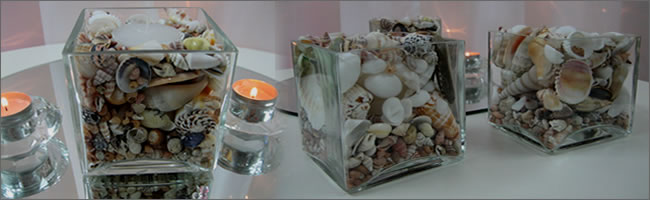 Shell cubes for hire for bar leaners, Centrepieces