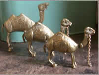 Brass camel hire for themed table centrepieces, Auckland