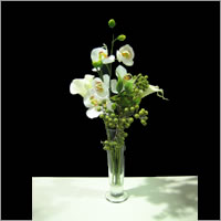 Quality vases for hire, Auckland